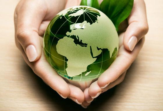 Cuidado medio ambiente